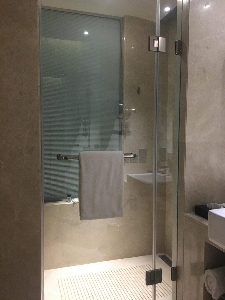 Shower at Holiday Inn Jaipur