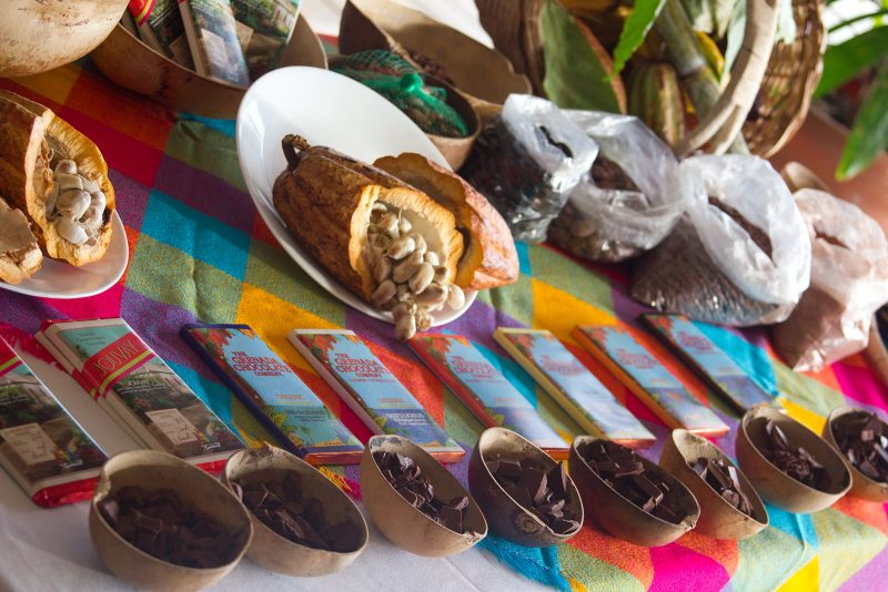 Cocoa beans and chocolate on display at Grenada Chocolate Festival