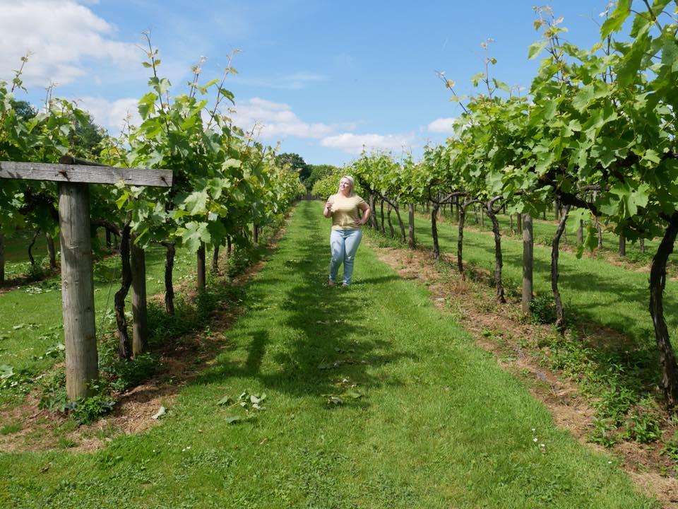 Tasting wine while on a vineyard tour at Llanerch Vineyard